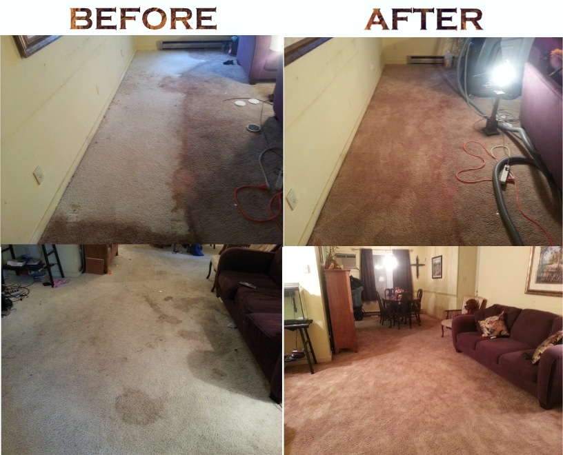 Dyetech Carpet Virginia Carpet Dyeing